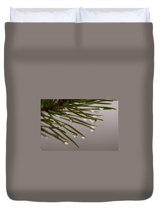 Pine Tree Needle Drop Droplet Reflection Rain Green Fog Foggy Nature Outdoors Hike Duvet Cover featuring the photograph In The Rain by Andrei Shliakhau