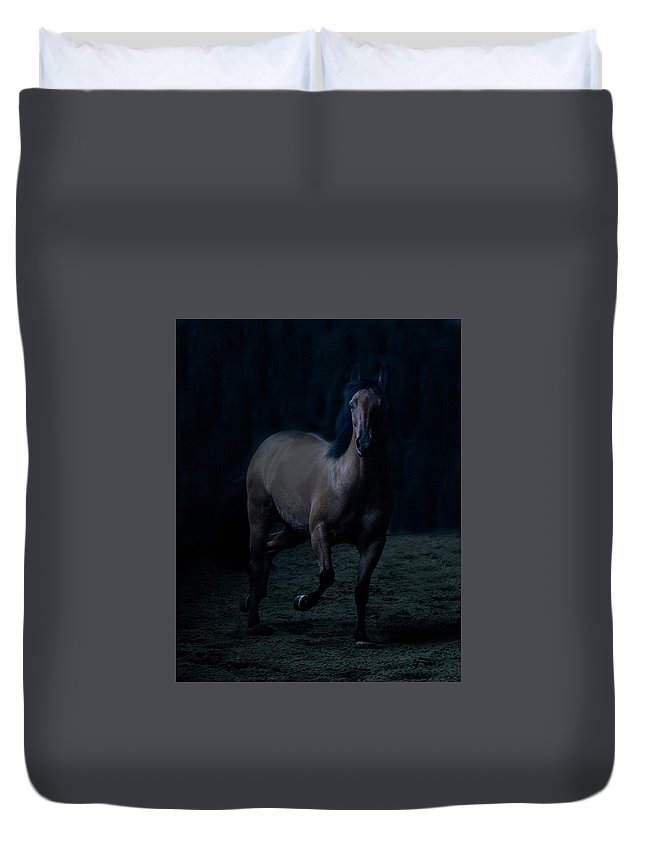 Horse Duvet Cover featuring the photograph In The Shadows by Eleszabeth McNeel