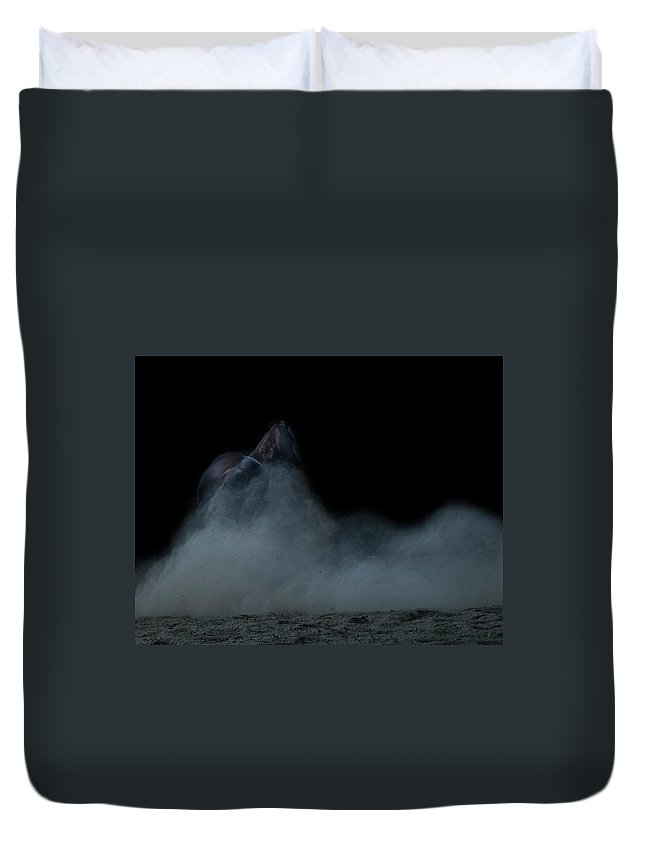 Dust Duvet Cover featuring the photograph In The Shadows Iv by Eleszabeth McNeel