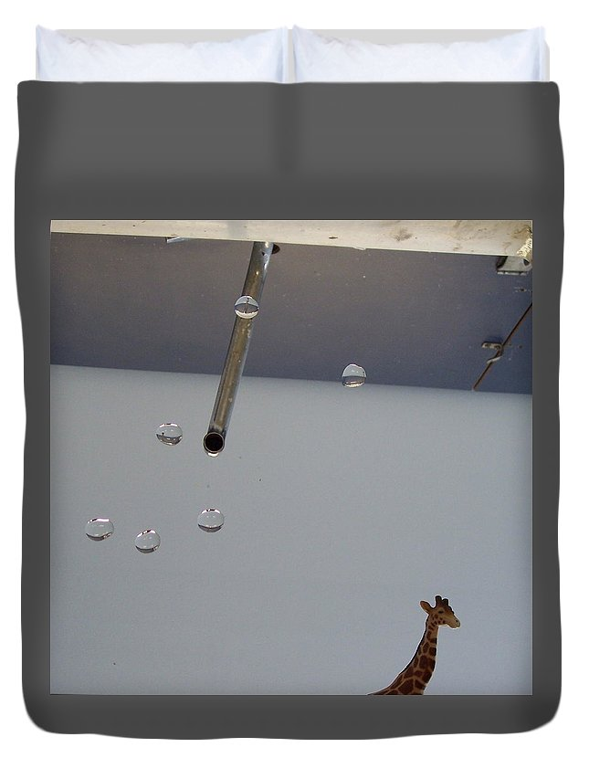 Giraffe Duvet Cover featuring the photograph In The Sink by Michelle Miron-Rebbe