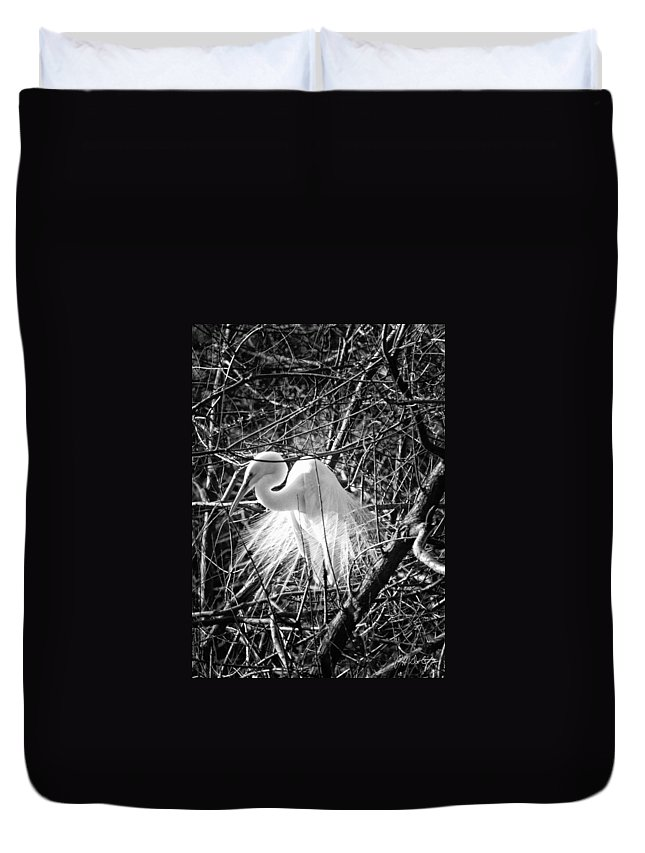 Birds Duvet Cover featuring the photograph In The Trees by Phill Doherty
