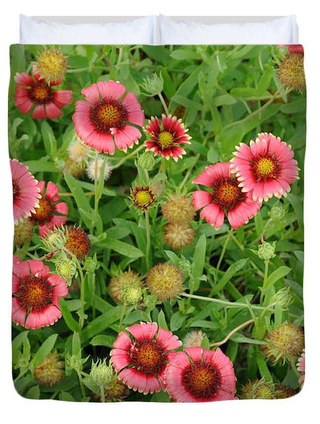 Indian Blanket Flowers Duvet Cover featuring the photograph Indian Blanket Flowers by Bradford Martin