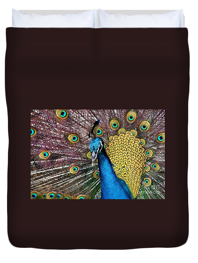 Aloha Duvet Cover featuring the photograph Indian Blue Peacock by Sharon Mau