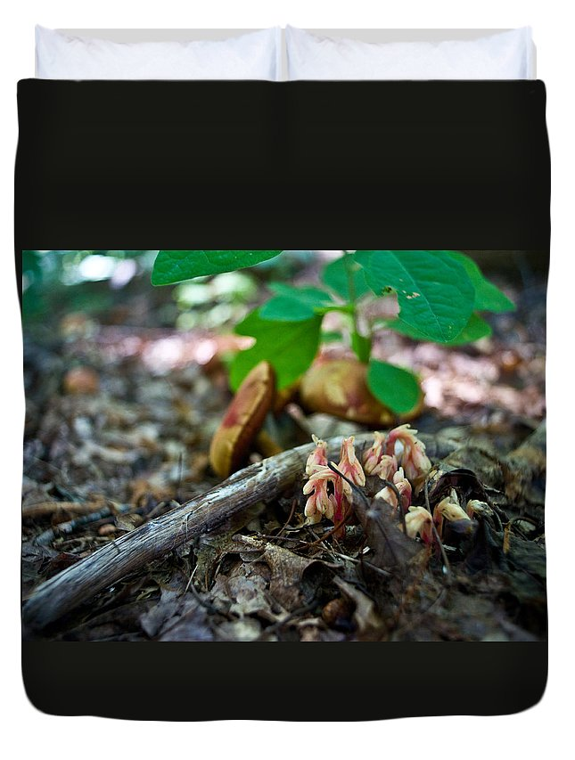Cove Duvet Cover featuring the photograph Indian Pipe 6 by Douglas Barnett