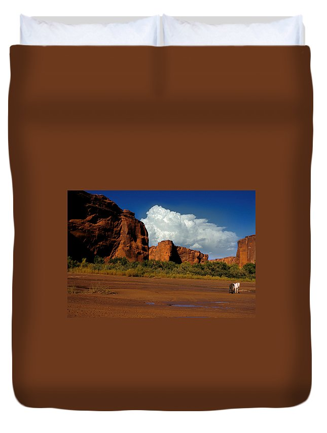 Horses Duvet Cover featuring the photograph Indian Ponies In The Canyon by Jerry McElroy