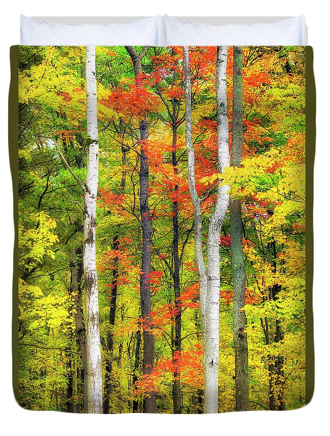 Fall Trees Duvet Cover featuring the photograph Indian Summer by Christina Rollo
