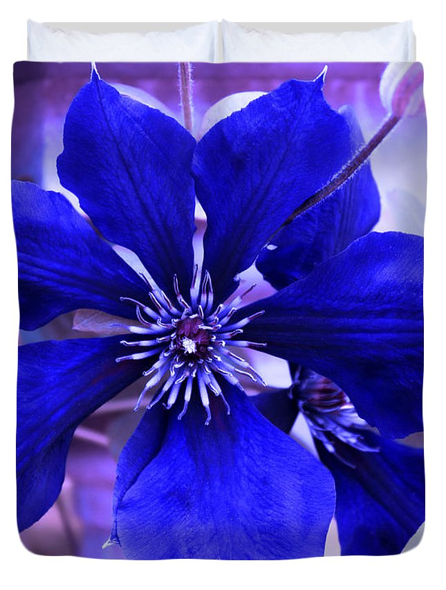 Blue Flower Duvet Cover featuring the photograph Indigo Flower by Milena Ilieva