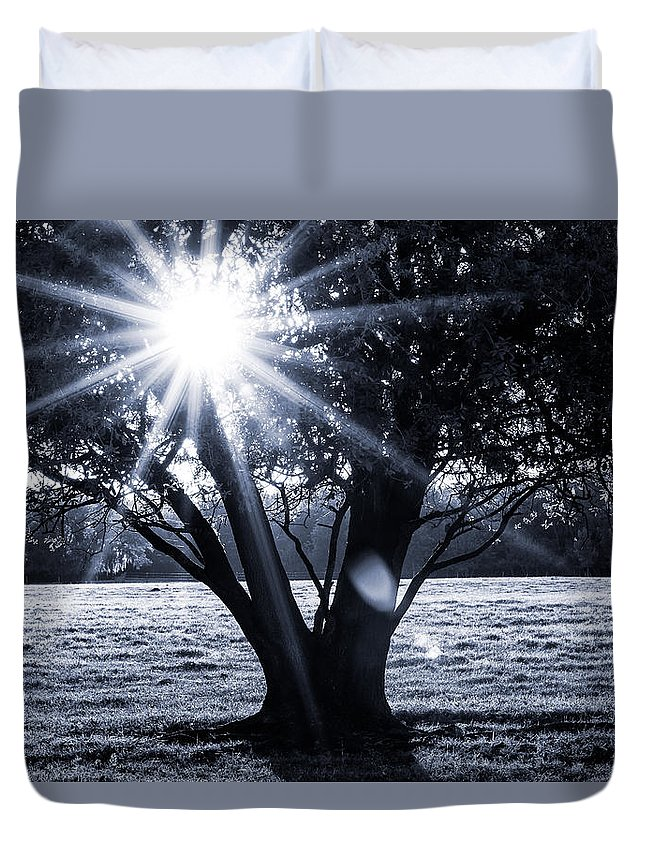 Tree Duvet Cover featuring the photograph Innerlight II by Susan Pantuso