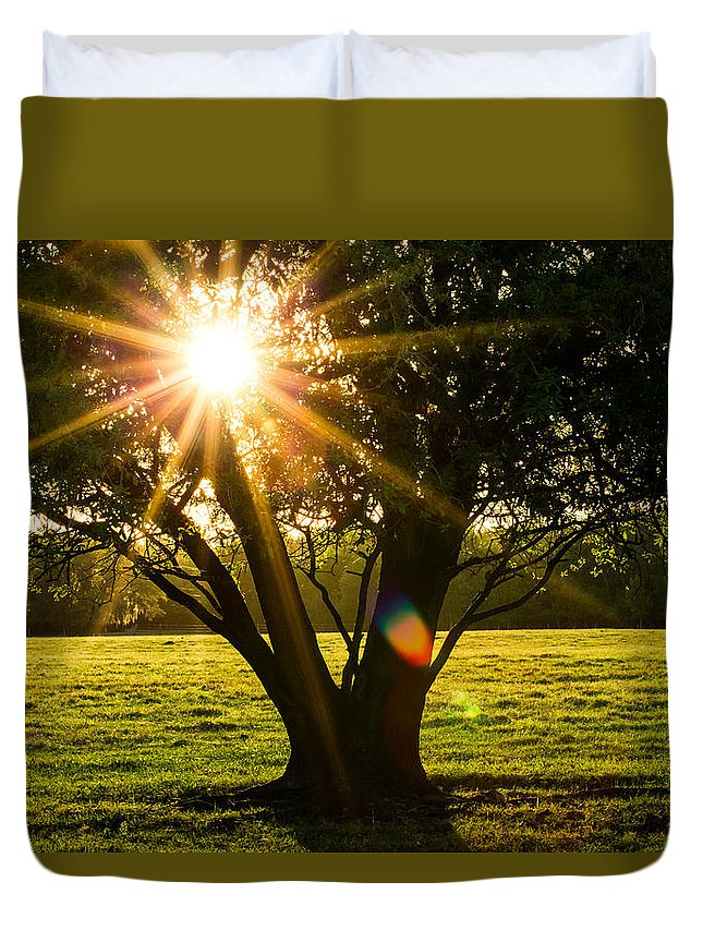 Tree Duvet Cover featuring the photograph Innerlight by Susan Pantuso