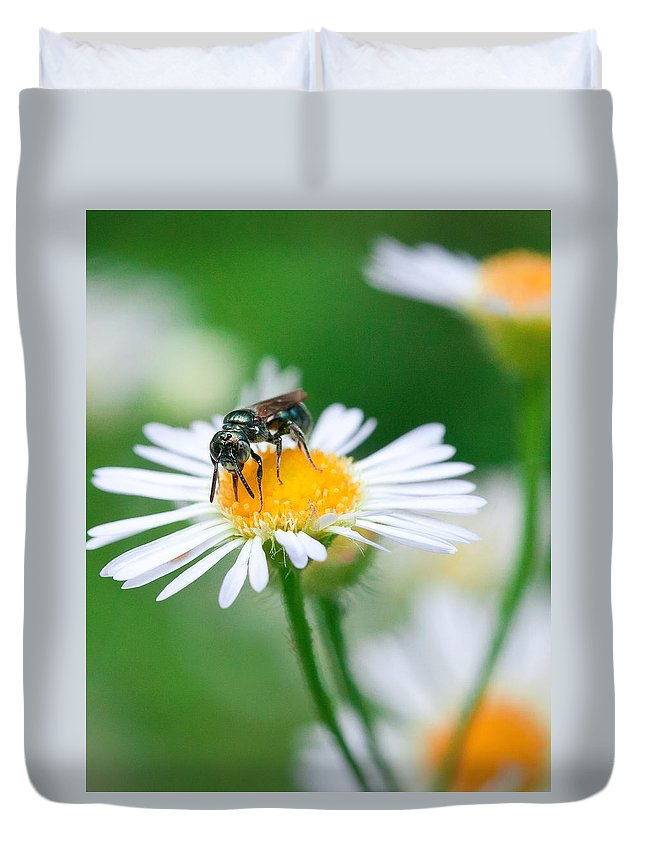 Macro Duvet Cover featuring the photograph Insect Buffet by David Lamb