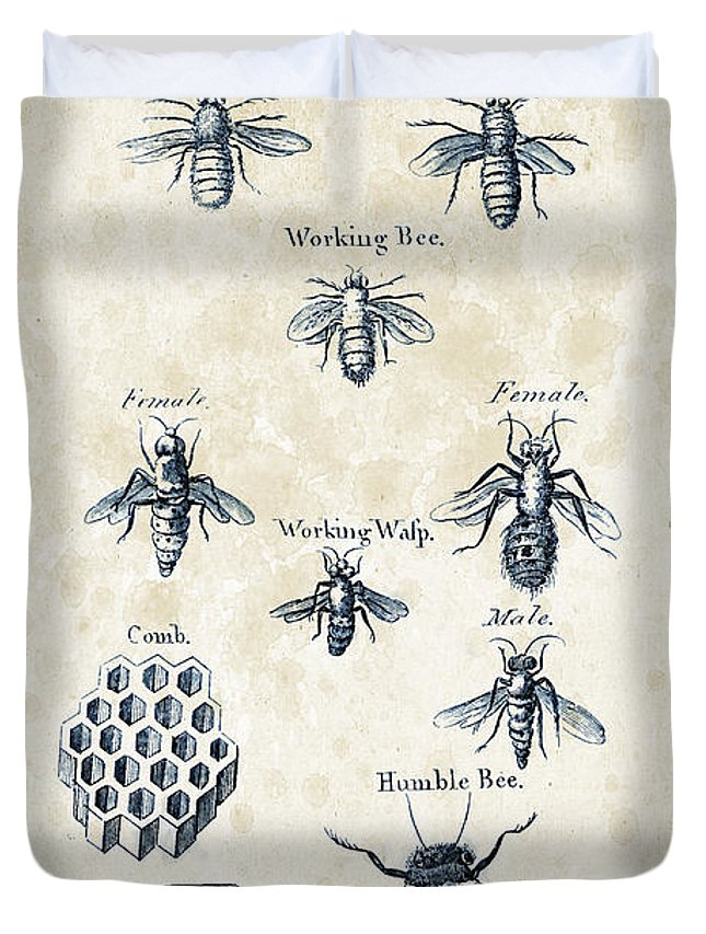 Bee Duvet Cover featuring the digital art Insects - 1792 - 14 by Aged Pixel