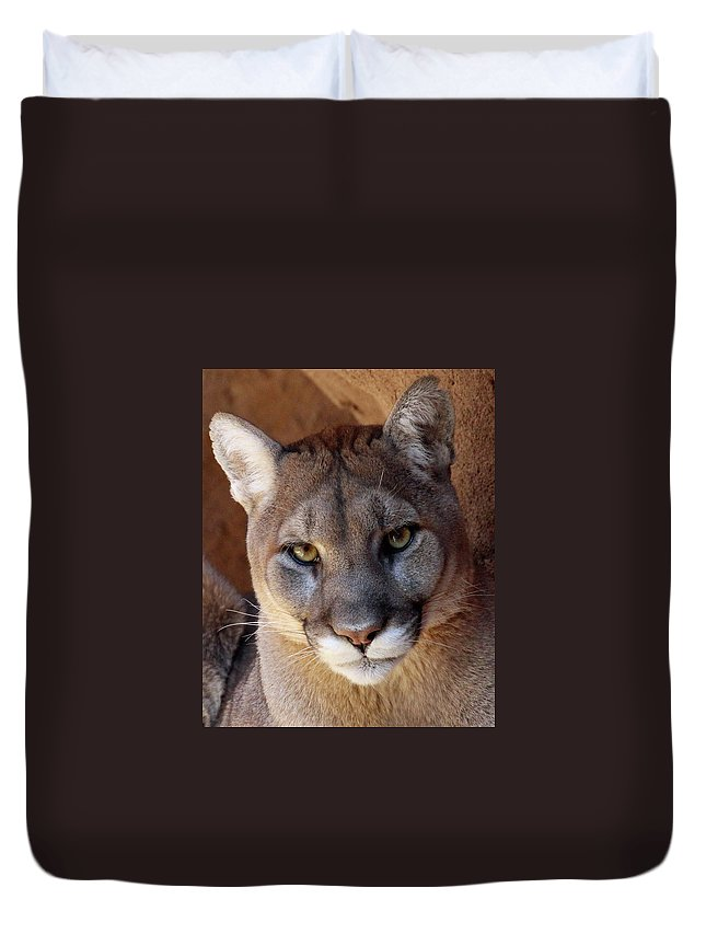 Animal Duvet Cover featuring the photograph Into His Eyes by Christina Boggs
