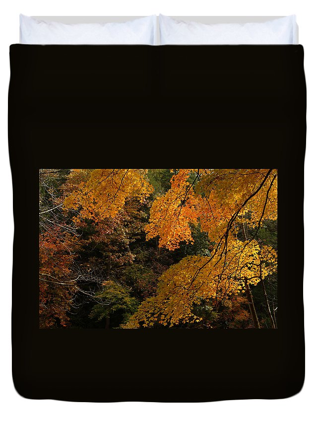 Autumn Duvet Cover featuring the photograph Into The Fall by Michael McGowan