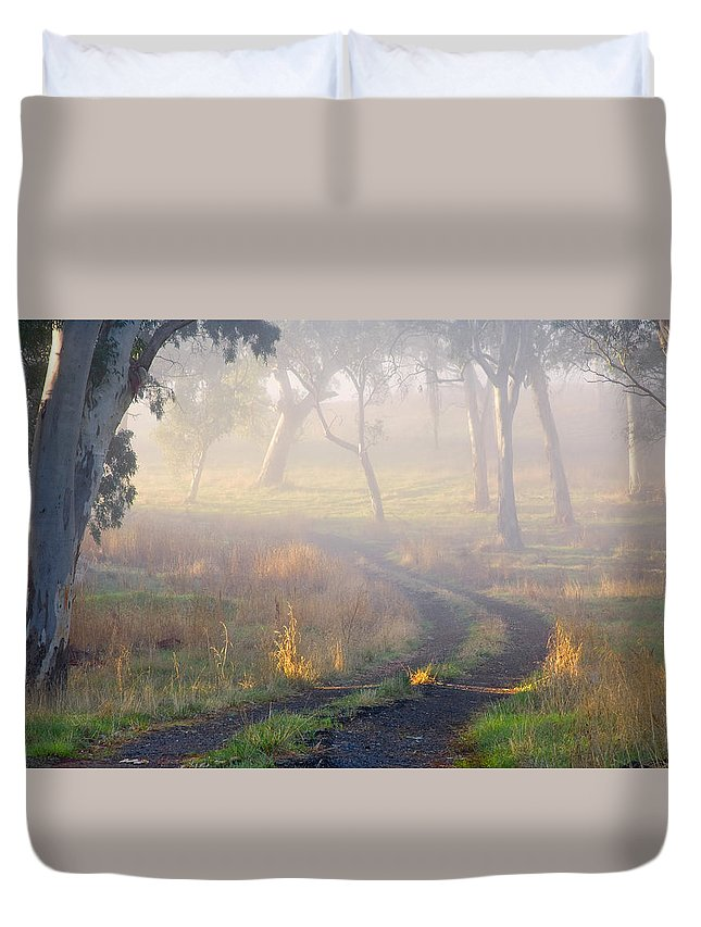 Mist Duvet Cover featuring the photograph Into The Mist by Mike Dawson