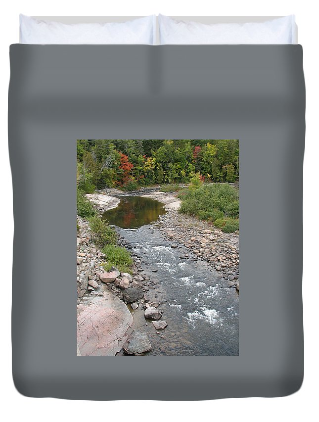 Water Duvet Cover featuring the photograph Into The Woods by Kelly Mezzapelle