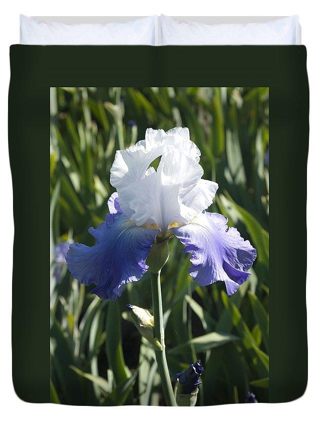Iris Duvet Cover featuring the photograph Iris 4 by Sara Stevenson