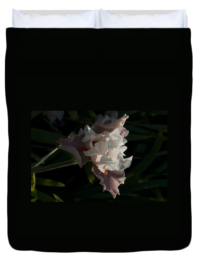 Flowers Duvet Cover featuring the photograph Iris 5 by Sara Stevenson