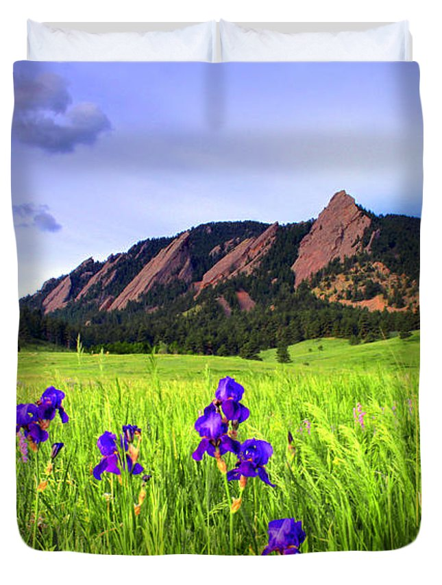 Flatirons Duvet Cover featuring the photograph Iris And Flatirons by Scott Mahon