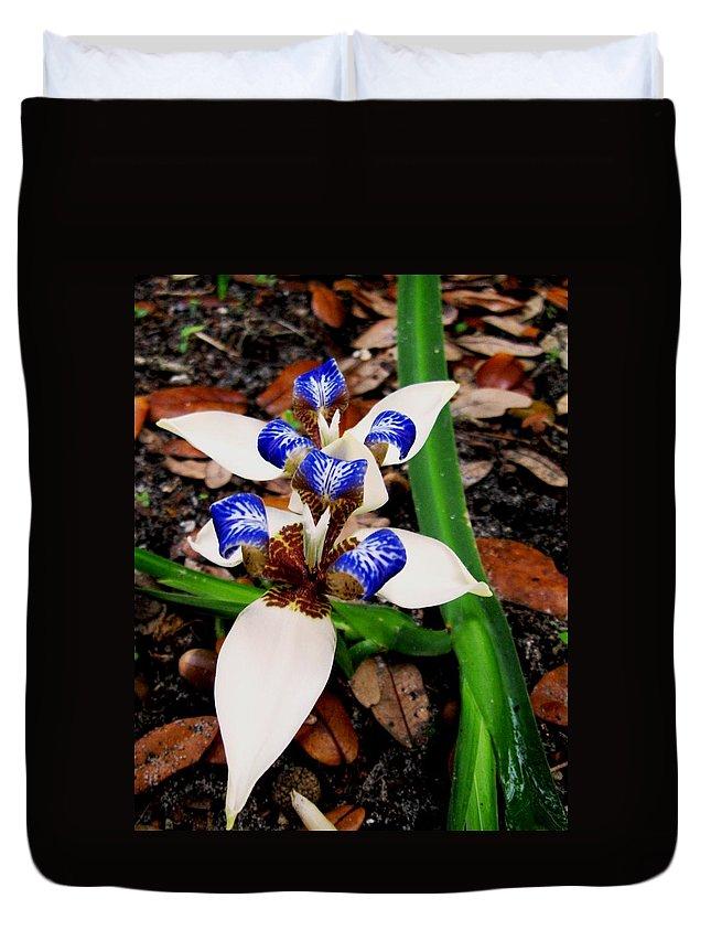 Iris Duvet Cover featuring the photograph Iris by Angela Murray