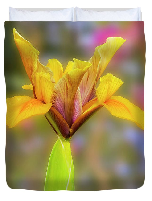 Flower Duvet Cover featuring the photograph Iris Bronze Perfection by Terri Waters