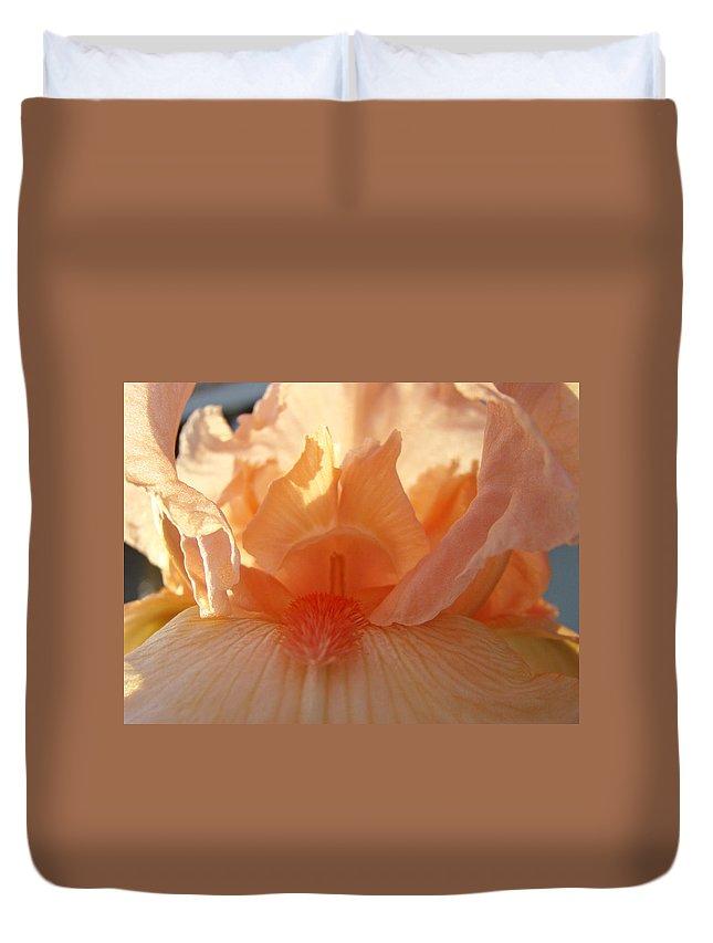 Iris Duvet Cover featuring the photograph Iris Flower Art Prints Sunlit Orange Irises Baslee Troutman by Baslee Troutman
