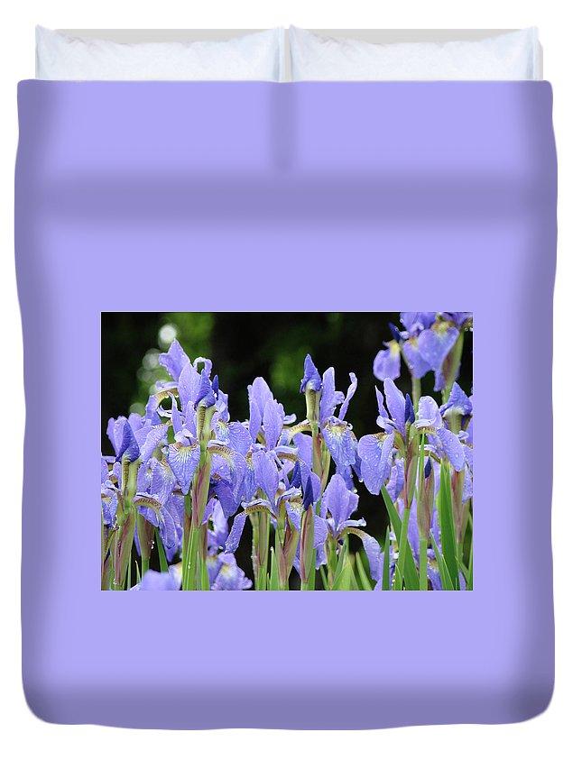 Iris Duvet Cover featuring the photograph Iris Flowers Art Print Blue Purple Irises Spring Rain by Baslee Troutman
