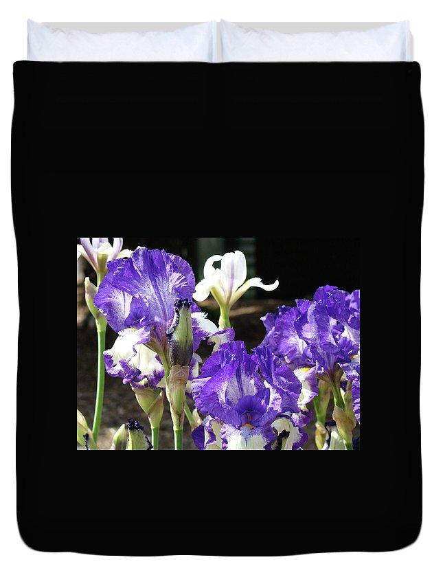 Iris Duvet Cover featuring the photograph Iris Flowers Floral Art Prints Purple Irises Baslee Troutman by Baslee Troutman