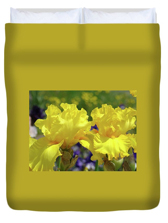 Iris Duvet Cover featuring the photograph Iris Flowers Garden Art Yellow Irises Baslee Troutman by Baslee Troutman