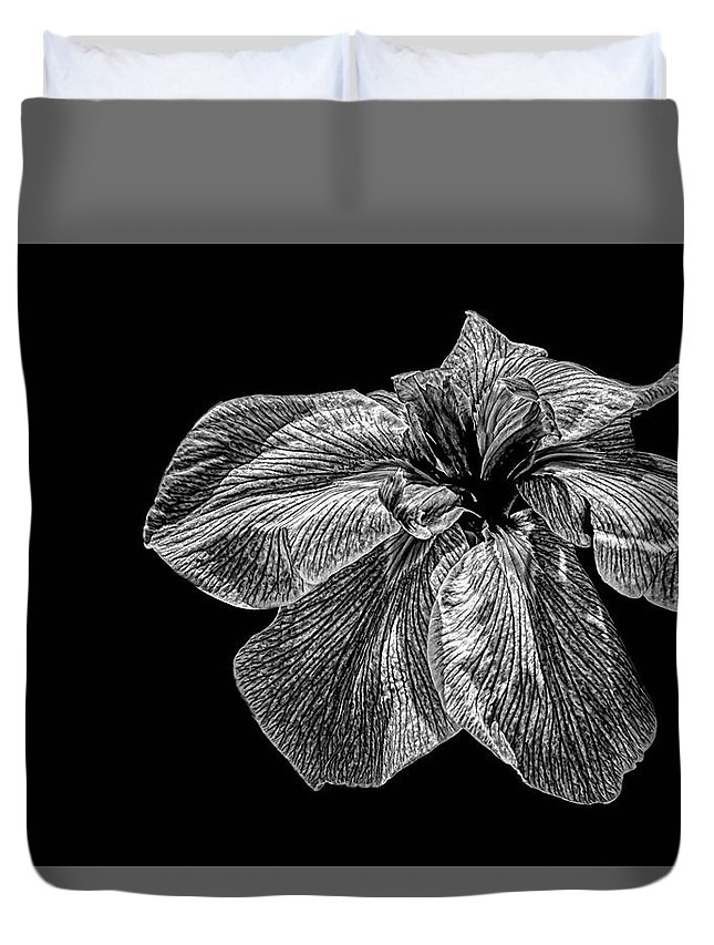 Iris In Black And White Duvet Cover featuring the photograph Iris In Black And White by Janet Ballard