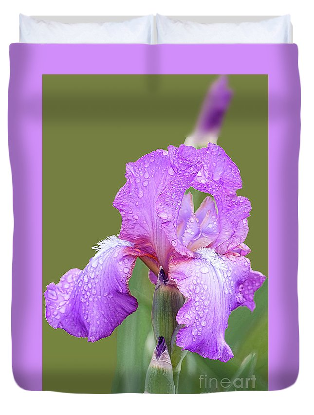 Lavender Iris Duvet Cover featuring the photograph Iris In Summer Rain by Regina Geoghan