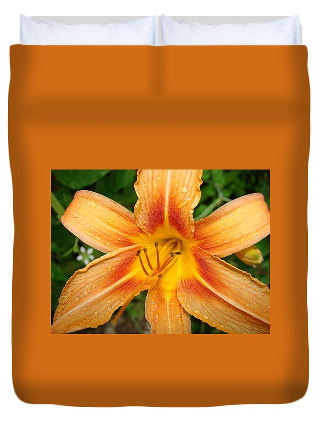 Nature Duvet Cover featuring the photograph Iris In The Morning by Mary Halpin