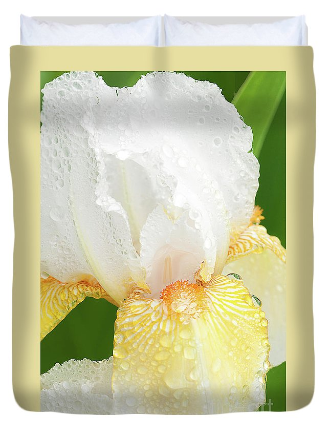 Iris White Duvet Cover featuring the photograph Iris In The Rain II by Regina Geoghan