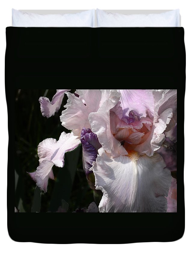 Flower Duvet Cover featuring the photograph Iris Lace by Steve Karol