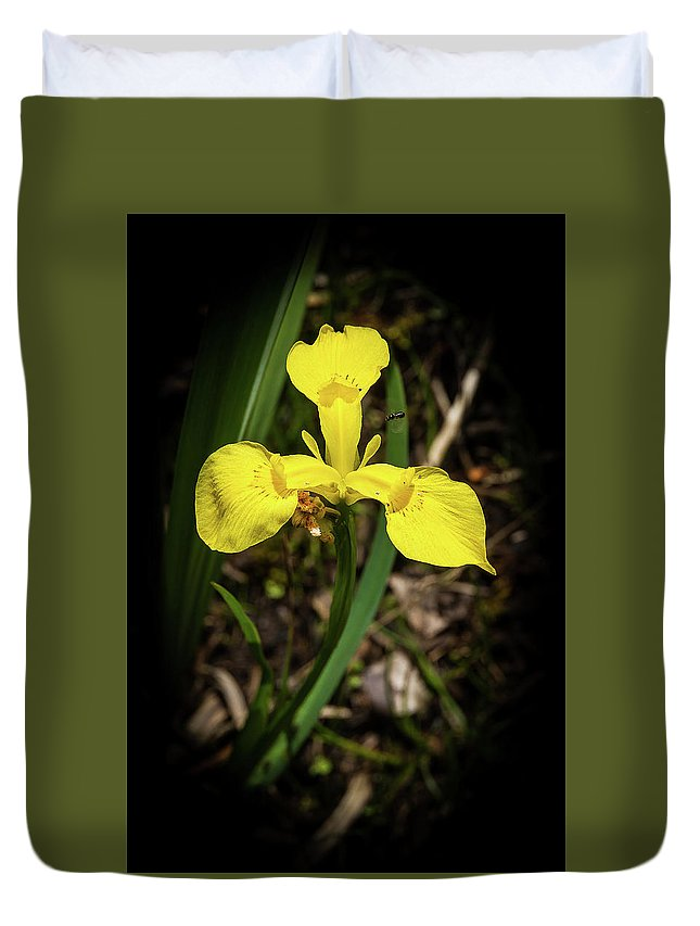Iris Duvet Cover featuring the photograph Iris Of The Marshes - 1 by Paul MAURICE