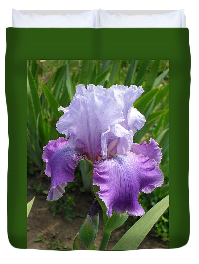 Iris Duvet Cover featuring the photograph Iris by Peggy King