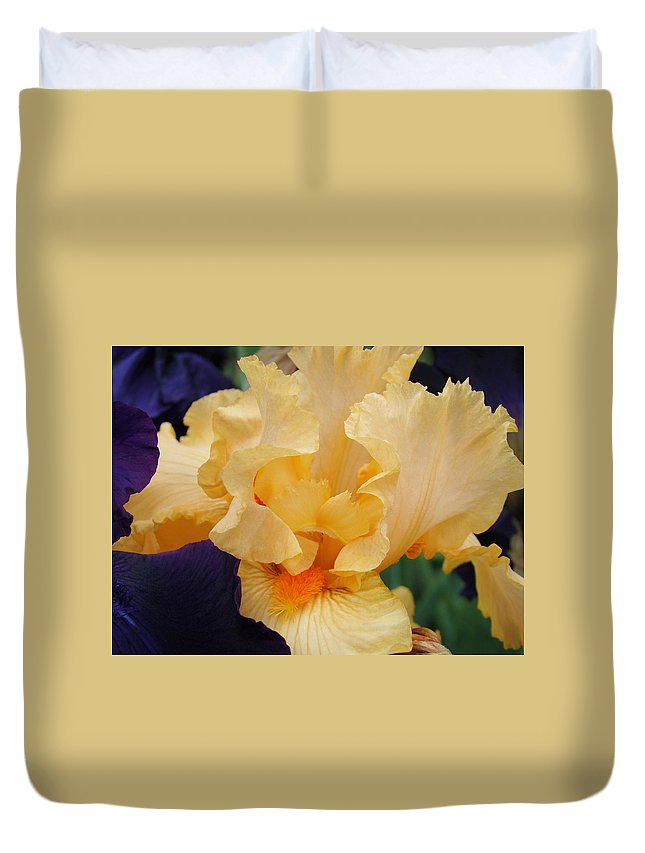 �irises Artwork� Duvet Cover featuring the photograph Irises Art Prints Peach Iris Flowers Artwork Floral Botanical Art Baslee Troutman by Baslee Troutman
