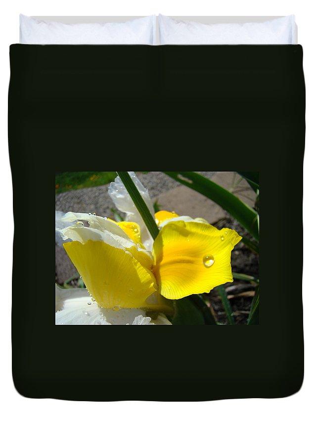 �irises Artwork� Duvet Cover featuring the photograph Irises Artwork Iris Flowers Art Prints Flower Rain Drops Floral Botanical Art Baslee Troutman by Baslee Troutman