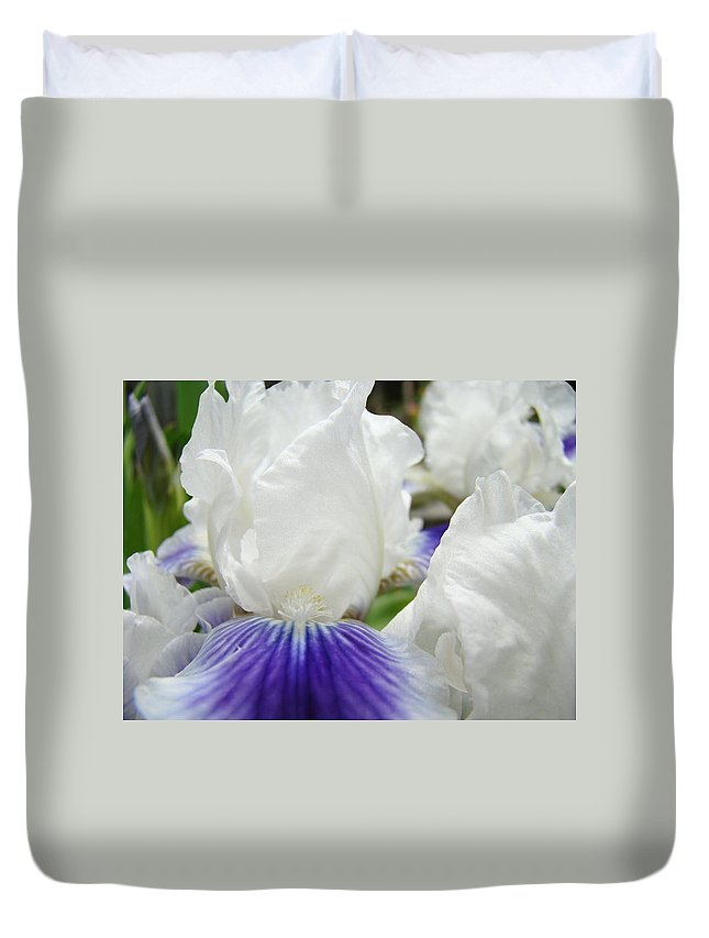 Iris Duvet Cover featuring the photograph Irises Flowers Art Print Gifts White Purple Iris Flower by Baslee Troutman