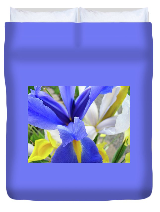 �irises Artwork� Duvet Cover featuring the photograph Irises Flowers Artwork Blue Purple Iris Flowers 1 Botanical Floral Garden Baslee Troutman by Baslee Troutman