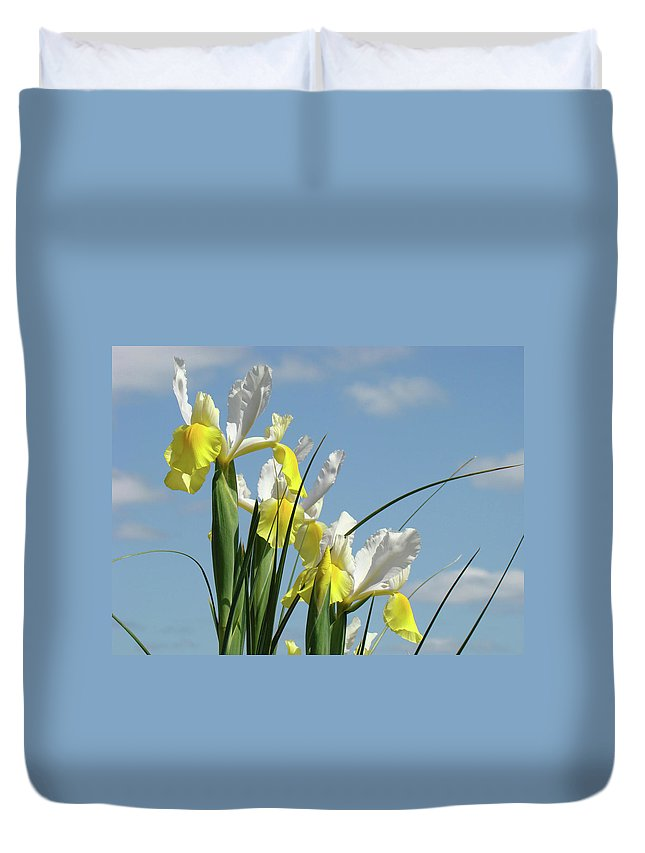 Iris Duvet Cover featuring the photograph Irises In Blue Sky Art Print Spring Iris Flowers Baslee Troutman by Baslee Troutman