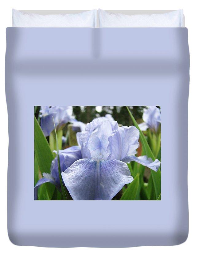 Iris Duvet Cover featuring the photograph Irises Light Blue Artwork Iris Flowers Baslee Troutman by Baslee Troutman
