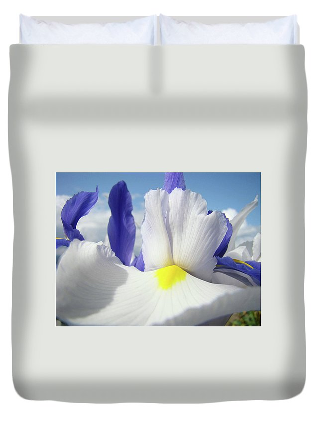 �irises Artwork� Duvet Cover featuring the photograph Irises White Iris Flowers 15 Purple Irises Art Prints Floral Artwork by Baslee Troutman