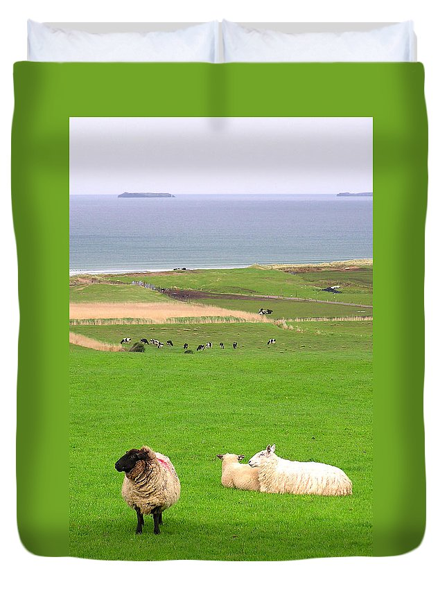 Ireland Duvet Cover featuring the photograph Irish Coast by Charles Harden