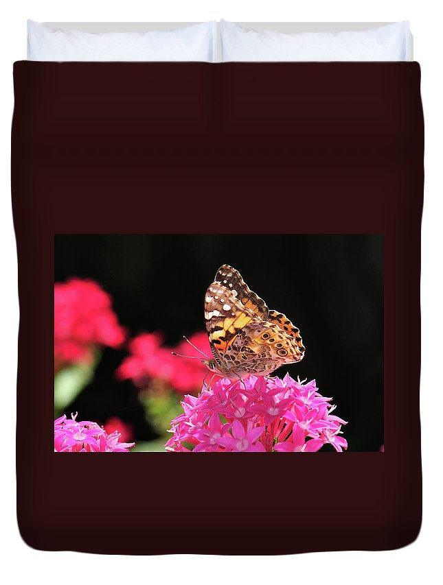 Butterfly Duvet Cover featuring the photograph Irredescent by Betty LaRue