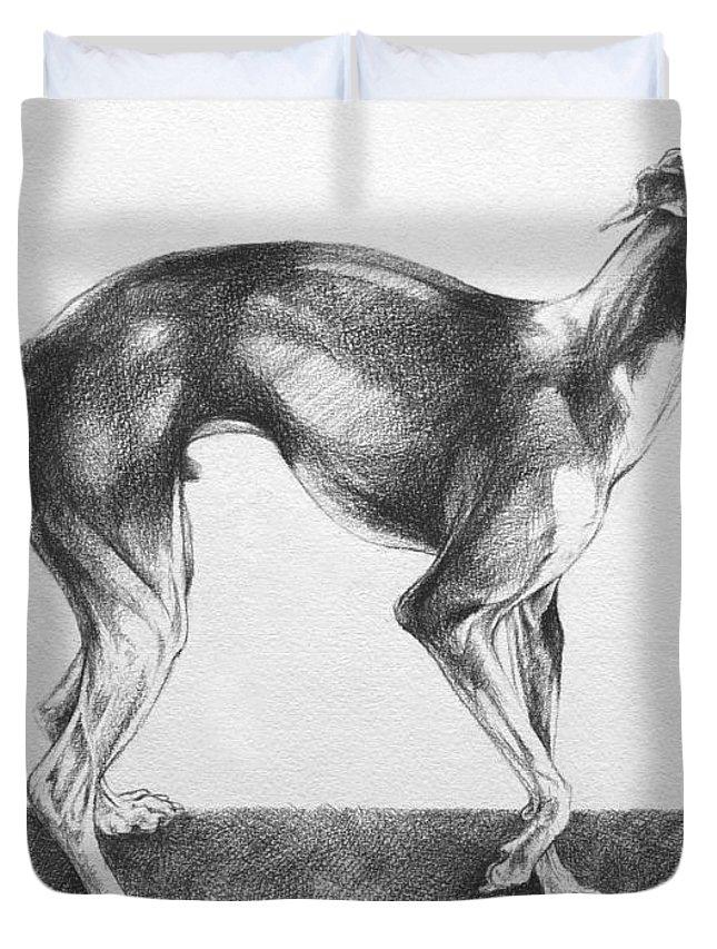 greyhound duvet cover
