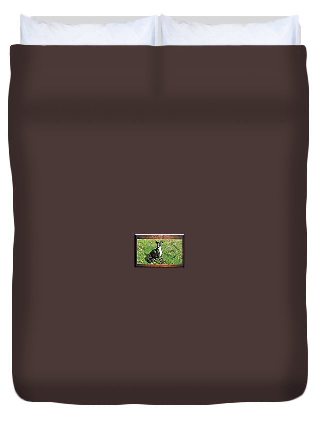 Wine Label For Dino The Italian Greyhound Duvet Cover featuring the digital art Italian Greyhound Wine by Janie Norris