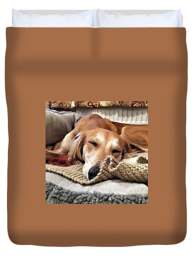Dogsofinstagram Duvet Cover featuring the photograph It's Been A Hard Day...  #saluki by John Edwards