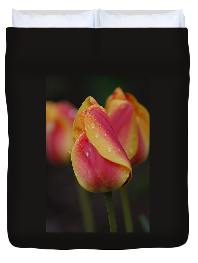 Flowers Duvet Cover featuring the photograph Its Hot by Donna Bentley