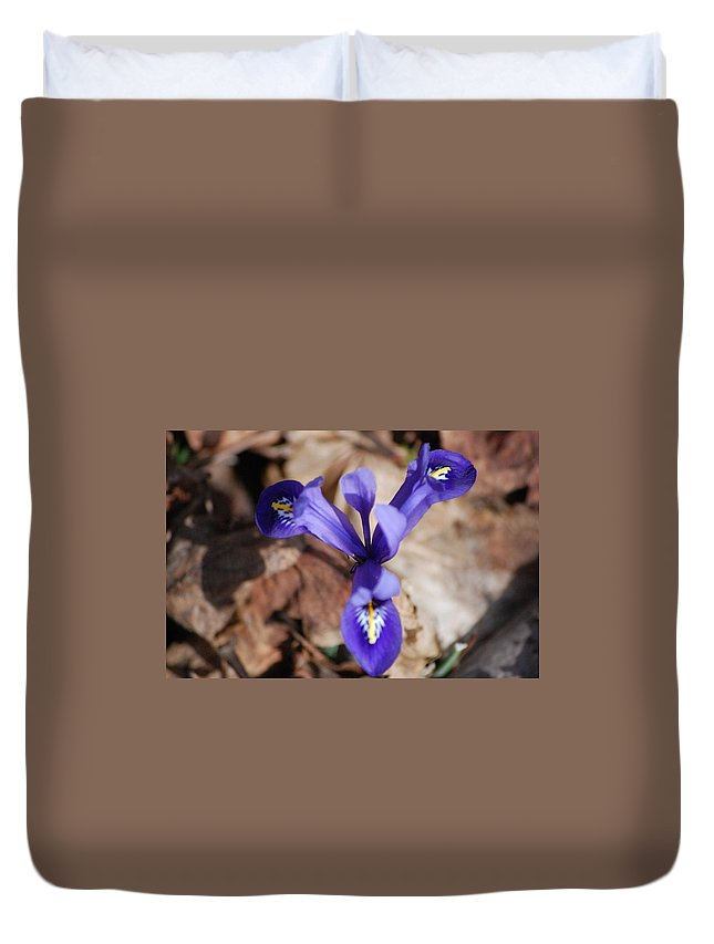 Digital Photography Duvet Cover featuring the photograph It's Spring 2010 by David Lane