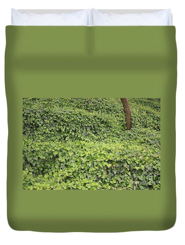 Ivy-covered Hill Duvet Cover featuring the photograph Ivy-covered Hill by Carol Groenen
